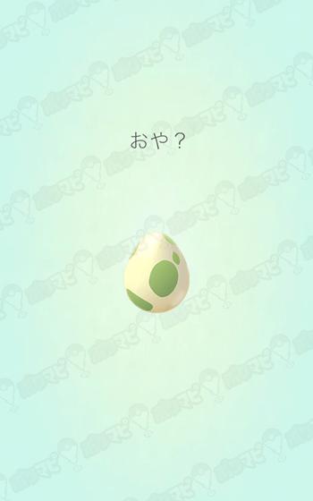 ポケモン たまご 孵化