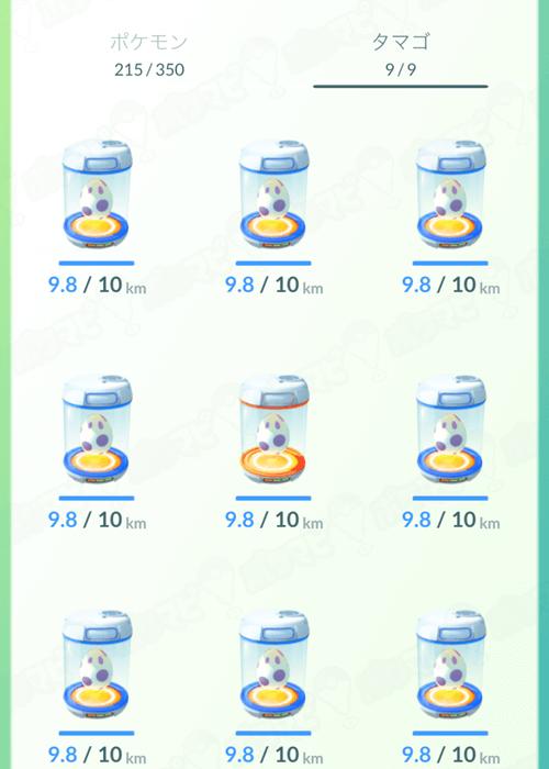 egg0x06img