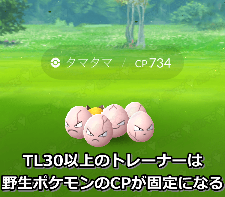 TL30以上は野生CP固定