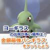 【ポケモンGO】ヨーギラスを捕獲して最強バンギラスをゲット!ヨーギラスの巣でアメを125個集める効率的な方法