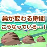 【ポケモンGO】ポケモンの巣変更日!巣が変わる瞬間をとらえた動画がスゴイ!