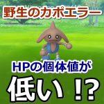 【ポケモンGO】野生のカポエラーはHP個体値が1番高いとは限らないって知ってた?