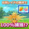 【ポケモンGO】ナナのみと金のズリのみで伝説レイド100%捕獲の裏技って本当なの!?