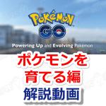 【ポケモンGO】ポケモンを育てる編!初心者向け公式動画を日本語で解説