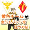【ポケモンGO】黄色チームだけど金ジムバッジを狙う方法を考えてみたぜ!