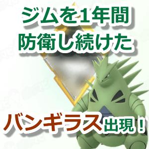 山形 ポケモン go フレンド