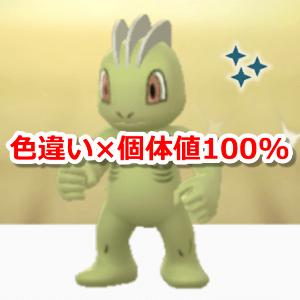 色違い × 個体値100%